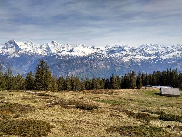 Вид на Jungfrau с пастбища недалеко от Vorsass
